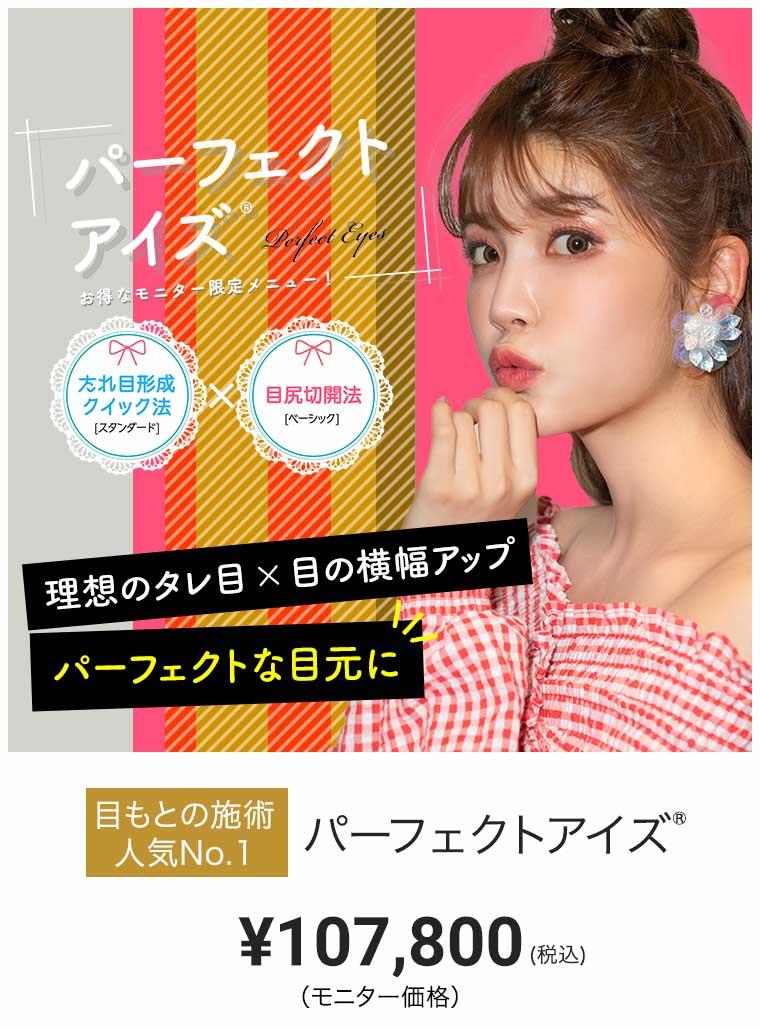パーフェクトアイズ モニター価格 ¥107,800